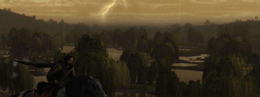 tmp_24871-riding_through_the_storm_13310-658152318